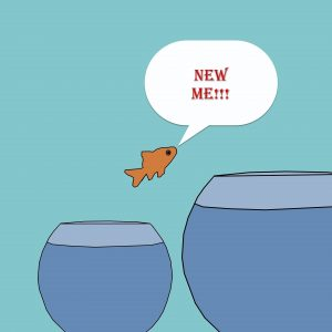 Jump to new